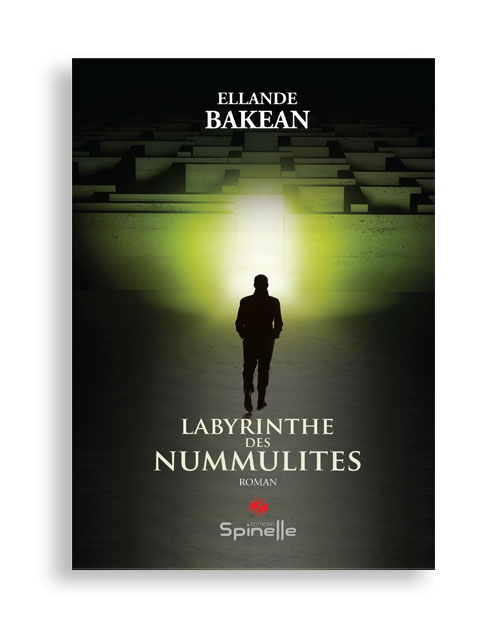 Labyrinthe des nummulites